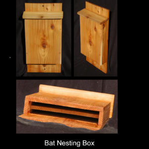 bat-box collage
